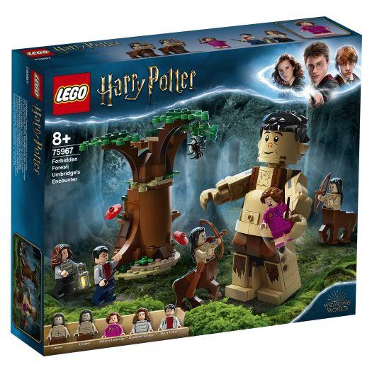 Конструктор LEGO Harry Potter Заборонений ліс Зустріч Амбридж (75967)купити